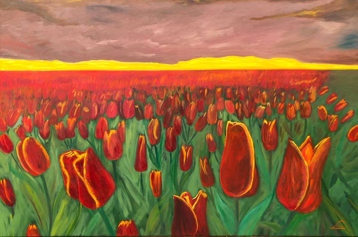 8089 Csodálatos tulipánok alkonyatkor